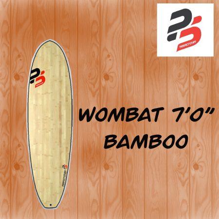 surf-corse-porto-vecchio-wombat-shop