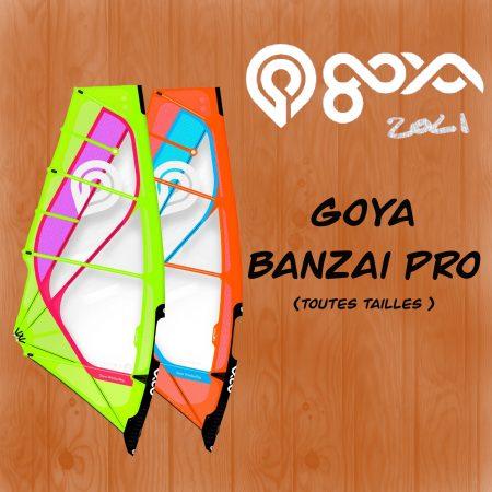 voile windsurfen corse Goya porto vecchio Alize surf shop